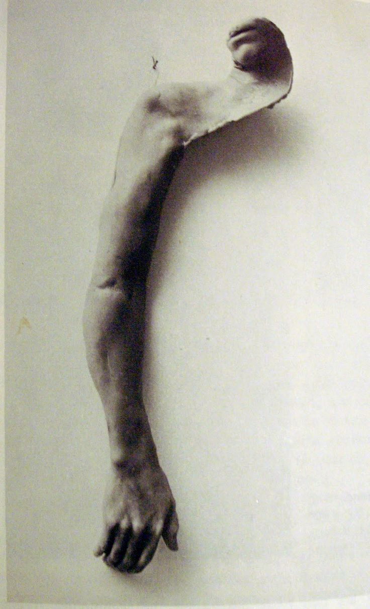BRUCE NAUMAN - From mouth to hand