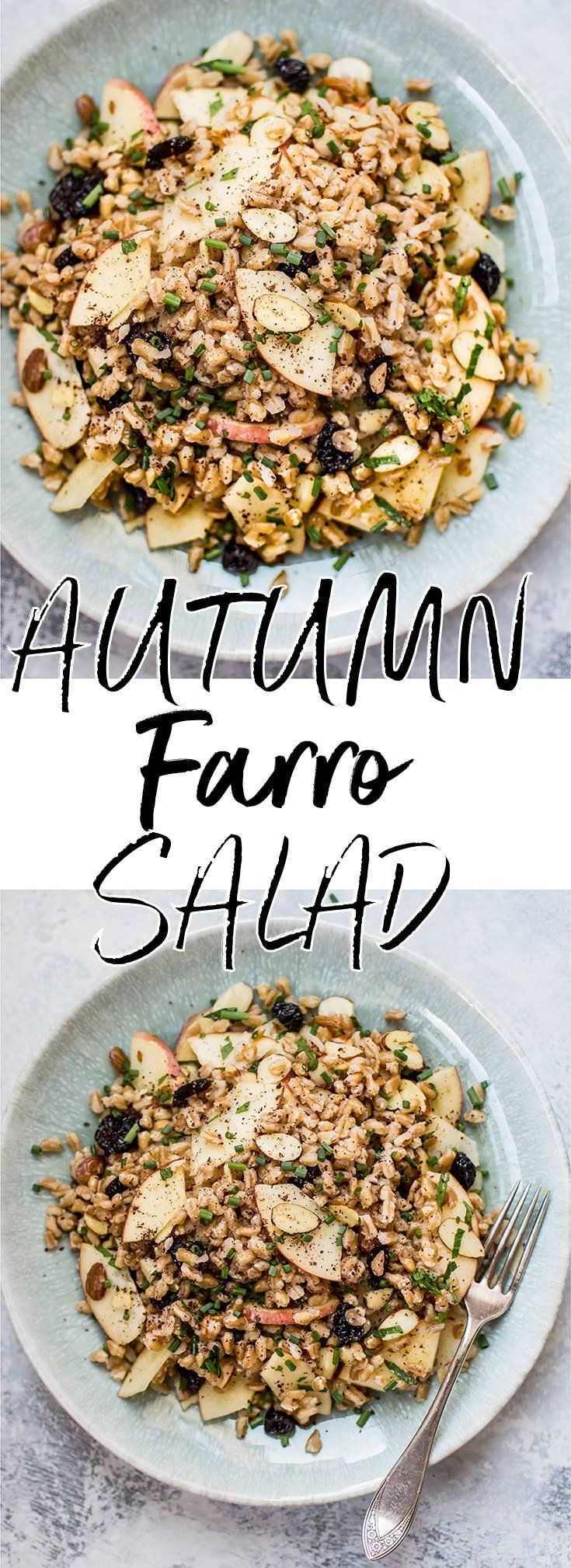 This healthy vegan farro salad is packed with dried cranberries, sliced almonds, honeycrisp apple slices, chives, and a lemon vinaigrette. It makes a wonderful light lunch or side dish. #farrosalad #veganrecipe