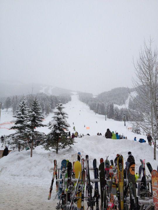 Panorama Mountain Village Resort Ski Area in Panorama , BC