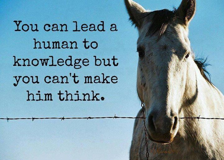 Can't make him think. #quotes