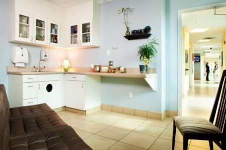 Comfort room - Coral Springs Animal Hospital in Coral Springs, Fla. - 2012 Veterinary Economics Hospital of the Year