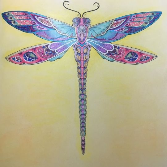 Dragonfly Jewelry Art Pens And Pencils Coloring Books Colouring Gel Johanna Basford Dragonflies Wings