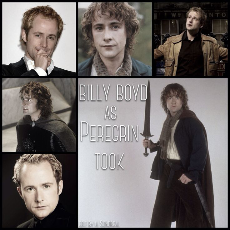 Billy Boyd as Peregrin Took by Heather Sondreal