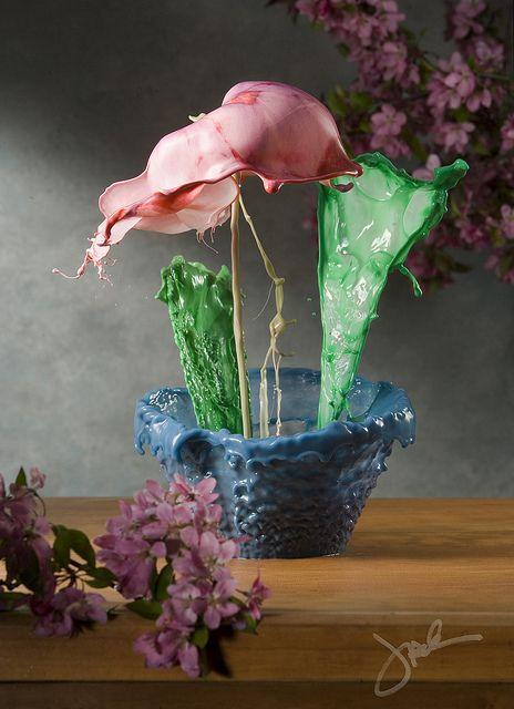 Flemish Fluid Floral by oldschooljack, Jack Long.   A single high-speed exposure, no photoshop!!