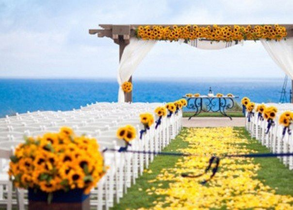 sunflower yellow outdoors wedding overlooking the oceanlovely aisle and wedding arch sunflower decorations sunflowerwedding yellowwedding pinterest