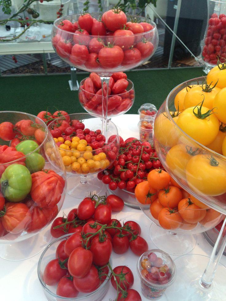 Tomaten soorten