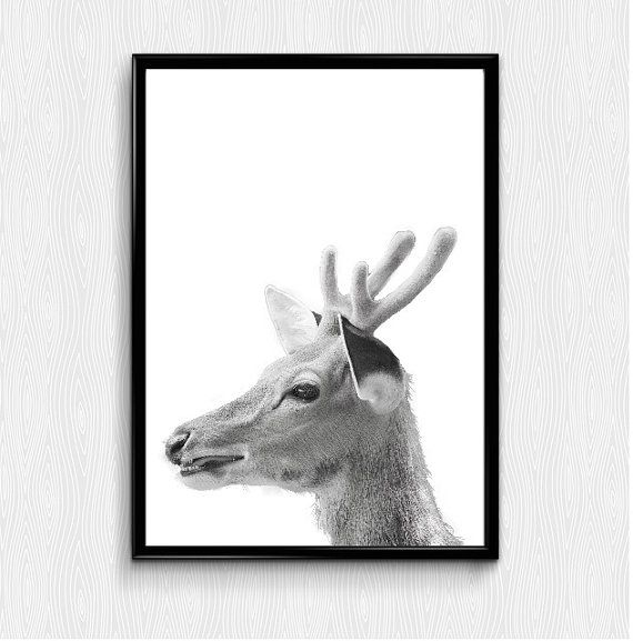 Check out this item in my Etsy shop https://www.etsy.com/listing/258531843/deer-print