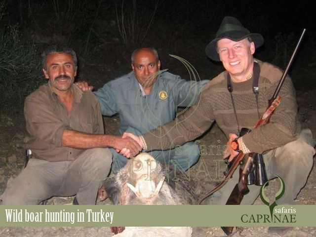 Wild boar hunting in Turkey http://riflescopescenter.com/category/bushnell-riflescope-reviews/