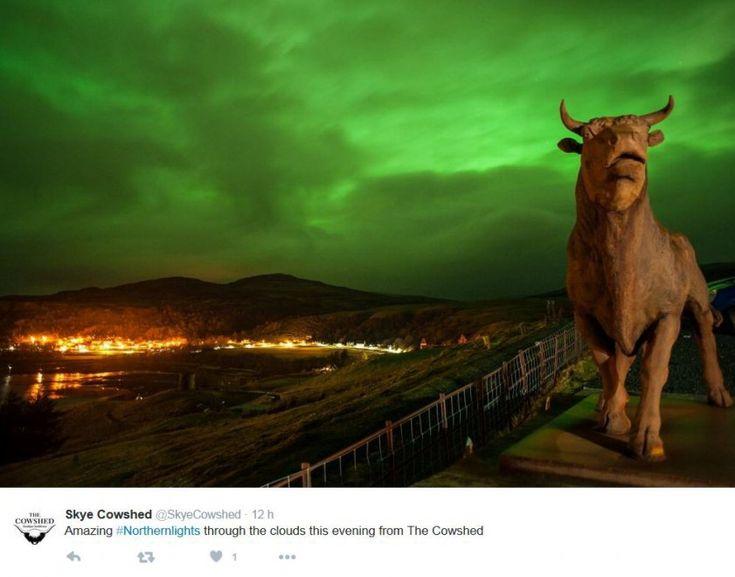 Cieli che vanno dal verde al viola. Nelle ultime ore gli utenti britannici si sono scatenati su Twitter pubblicando fotografie dell'aurora boreale. Il