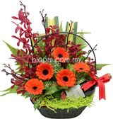 Florist Online (Kedai Bunga) | Hamper Delivery Kuala Lumpur Malaysia