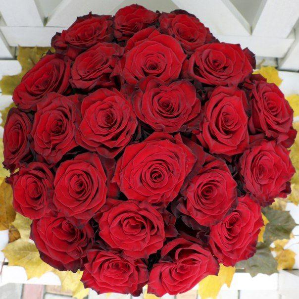 ►Шляпная Коробка С Розами◄ Свежие цветы в фирменных шляпных коробках с доставкой по Москве вы всегда найдете на нашем сайте ☛ con-amor.ru ☚ Доставка 0 рублей Москва! Стильный букет роз в шляпной коробке - оригинальный подарок любимой девушке! ❤ Подписывайся на доску ✔ Ищи ❝Con Amor❞ в других соцсетях!