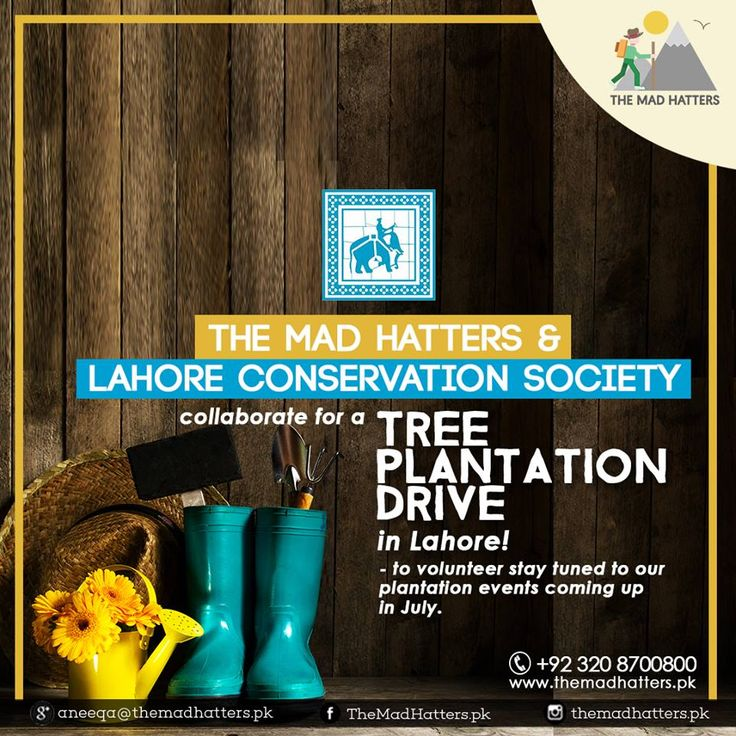 The Mad Hatters is initiating a tree plantation drive in collaboration with Lahore Conservation Society/Lahore Bachao Tehreek. We encourage people from all walks of life to participate in this campaign. Planting more trees in our country is the need of the hour, and we all need to play our part.  Fill the form to register for this campaign as a volunteer. https://docs.google.com/forms/d/e/1FAIpQLScYVrRowO79mewIyzeN39c563X7tPlLTXX4dDIwx25EJTXcQQ/viewform