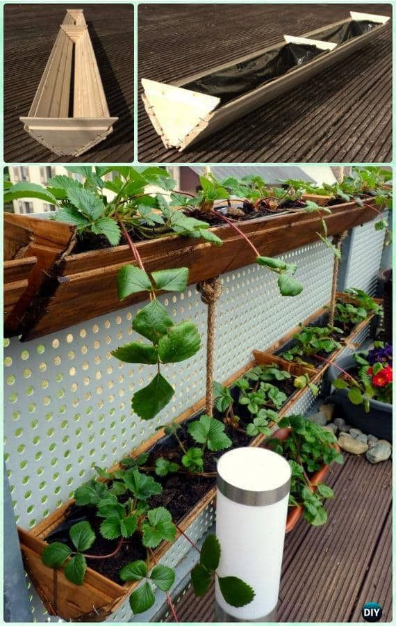 Best Way To Grow Strawberries In Containers 2020 Family Food