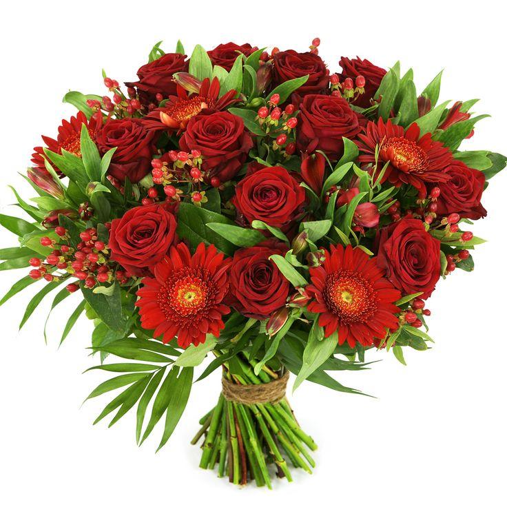 Fluweel rode rozen gecombineerd met rode bloemen en handgebonden in de korrenschoof techniek.    Zeer geschikt om te geven aan jouw geliefde, verjaardag.   Thuiswinkel Lid. Vers garantie. Snel bezorgd. BoeketCadeau.nl