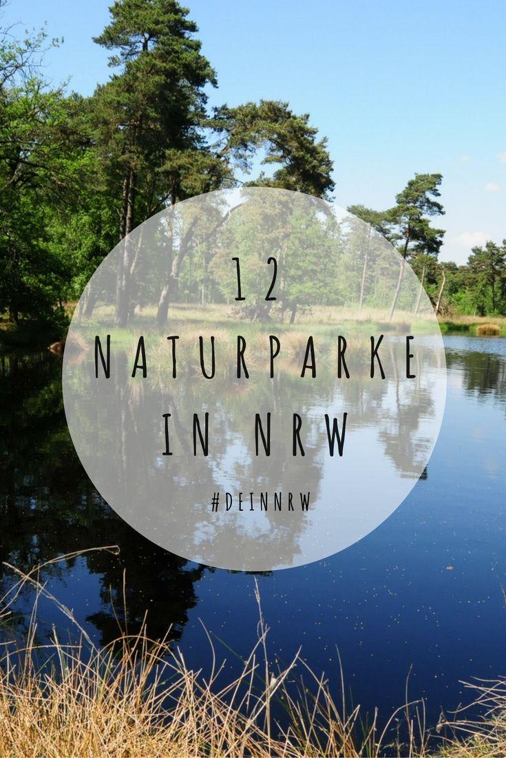 In den 12 Naturparken in NRW lässt sich die Schönheit der Natur aus nächster Nähe entdecken. Viele außergewöhnliche und bedrohte Tiere und Pflanzen haben sich hier angesiedelt. ©️ Naturpark Schwalm-Nette