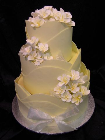 white and chocolate wedding cake 509 best images about cakes chocolate panels cigarillos 27203