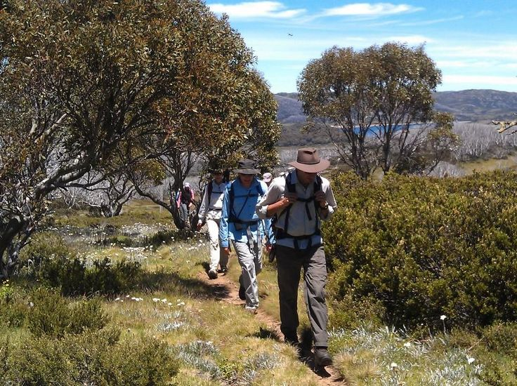 Hiking in Victoria's High Country | Hedonistic Hiking - Exploring the Bogong High Plains