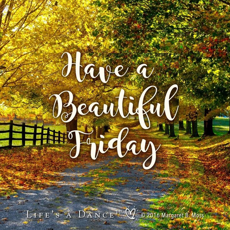 DesertRose,;,happy Friday,;,
