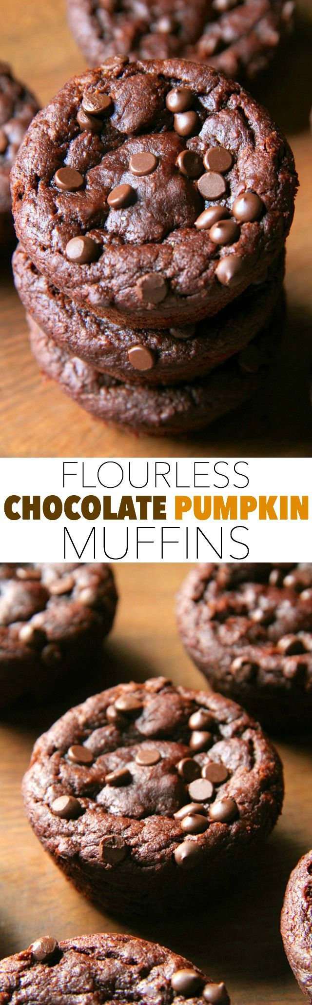 Flourless Chocolate Pumpkin Muffins -- gluten free, grain free, oil free, dairy free, refined sugar free, but so soft and delicious that you'd never be able to tell! || fall