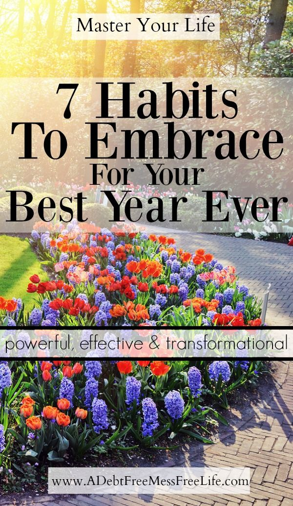 Looking to create your best year ever? These simple but powerful and effective startegies will have you meeting your goals and trasforming your life.