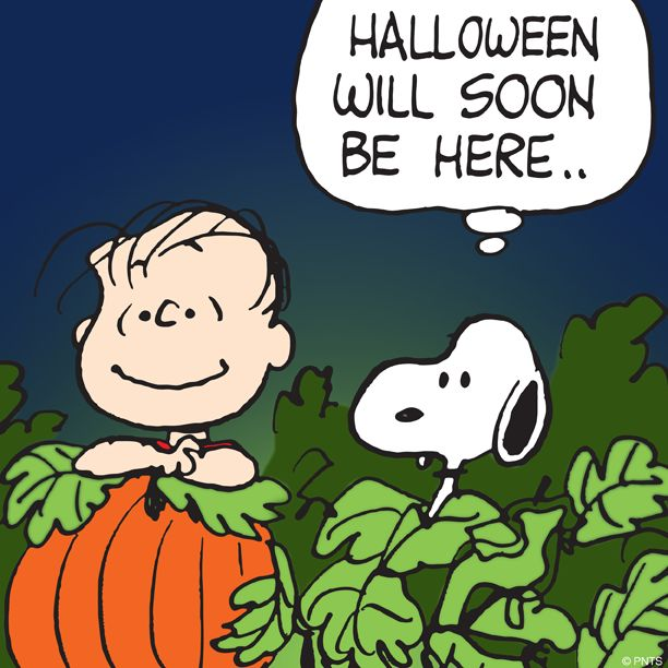 Its The Great Pumpkin Charlie Brown Quotes: Charles M. Schulz - Halloween