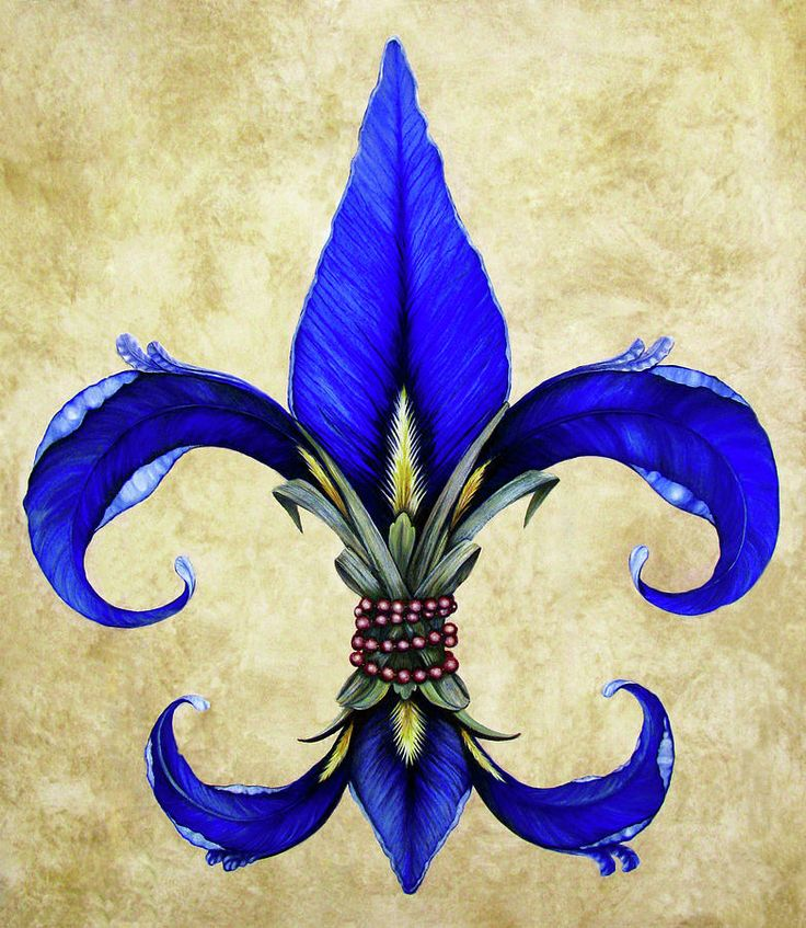 Flower Of New Orleans Blue Iris Painting  - Flower Of New Orleans Blue Iris Fine Art Print