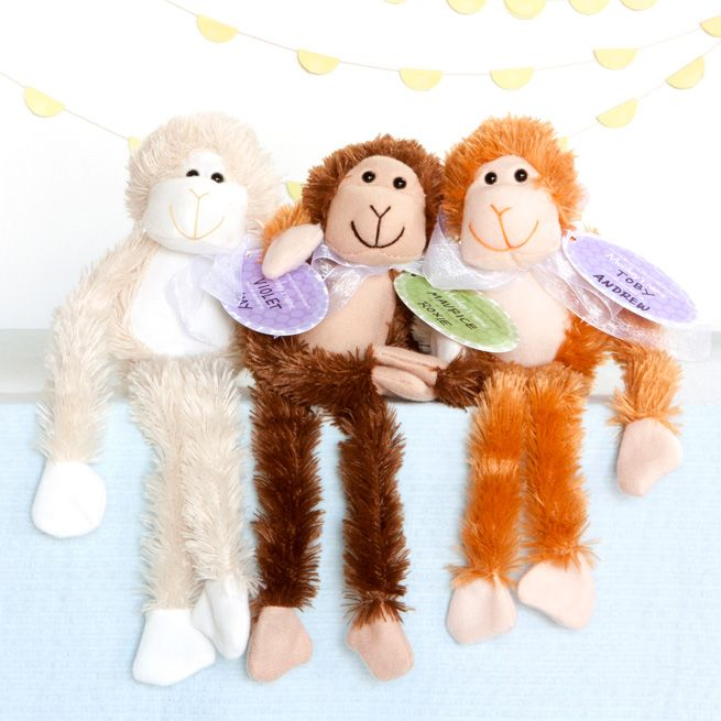 Adopt A Monkey Party Favors