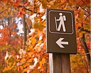 Five Traverse City trails to hit for fabulous Northern Michigan hiking including the TART trails, Muncie Lake, Grand Traverse Commons and more.