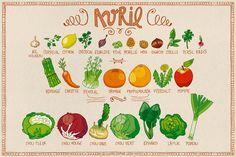 Le calendrier des fruits & légumes d'Avril   pissenlit