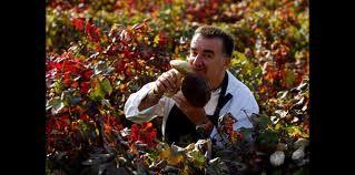 Massimo Camia Chef, Ristorante della Locanda nel Borgo Antico One Star Michelin. Barolo, Piedmont