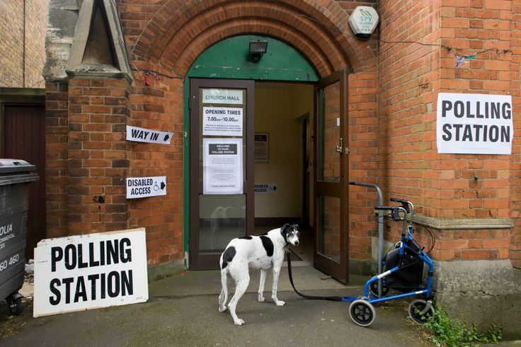 Dogs at polling stations - in pictures | Politics | The Guardian