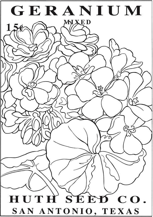 Welcome To Dover Publications Flower Pattern Drawing Book Page Flowers Vintage Seed Packets