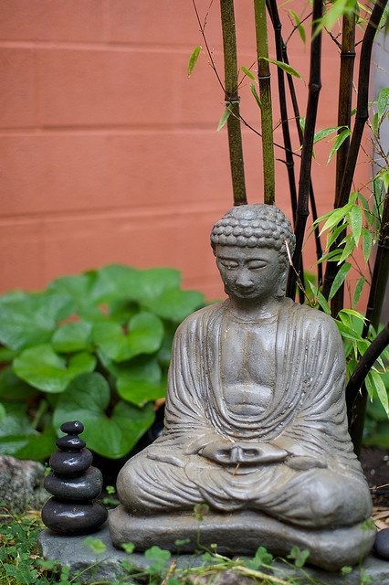 1000 images about meditation zen garden on pinterest gardens buddhists and small japanese garden. Black Bedroom Furniture Sets. Home Design Ideas