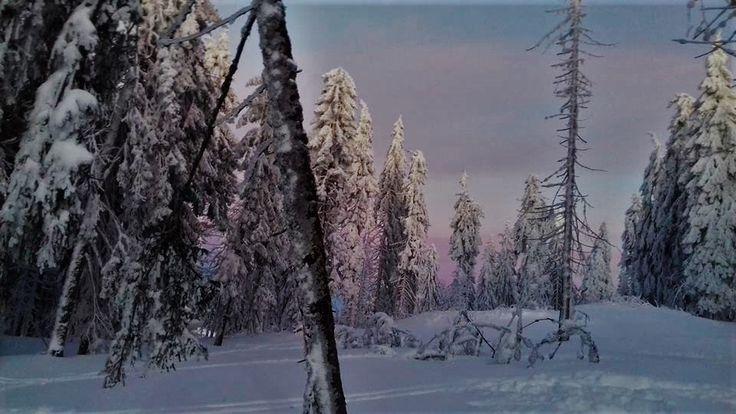 Partia Piatra graitoare, Arieseni. #arieseni #winter #snowboarding #sunset #december #romania