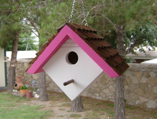Hang this one in an area of your backyard where neighbors and guests will notice your good taste in bird house design. A cute hanging wren house with white acrylic finish and a pink acrylic roof trim.
