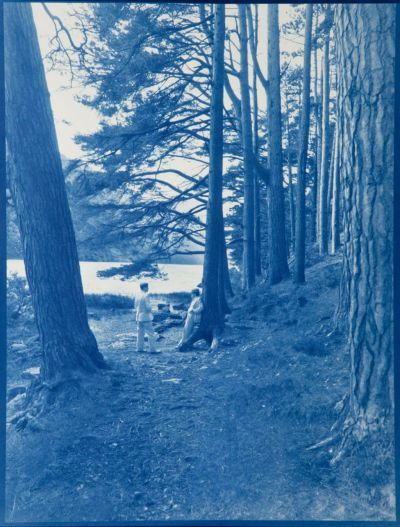 And high delicious revelry, 1917 , 23 5/8x 17 7/8 inches, cyanotype, 2010