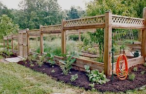 1000 images about food garden on pinterest potager garden vegetable garden and raised beds - Deer proof vegetable garden ideas ...