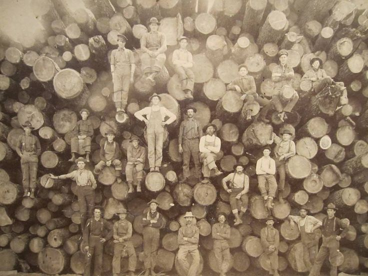 Logs...hard to realize how many and how big they are till you see the people standing on the ends