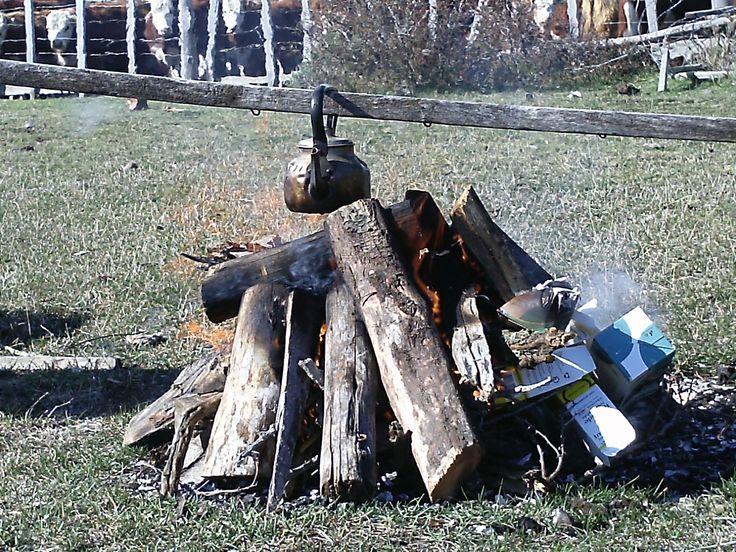 Calentanto agua para el mate en el campo