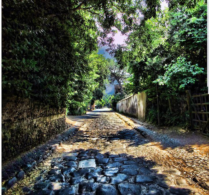 石畳に歴史を感じる。ローマの続くアッピア街道 イタリア