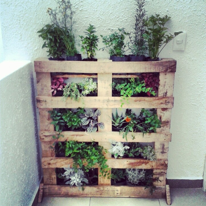 mi jardin vertical con pallets mon jardin pinterest pallets. Black Bedroom Furniture Sets. Home Design Ideas