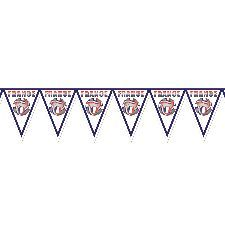 France Football Bunting 7ft x 12 inches. a traditional decoration and always a popular choice during Euro 2016, suitable for any venue. http://www.novelties-direct.co.uk/France-Football-Bunting.html