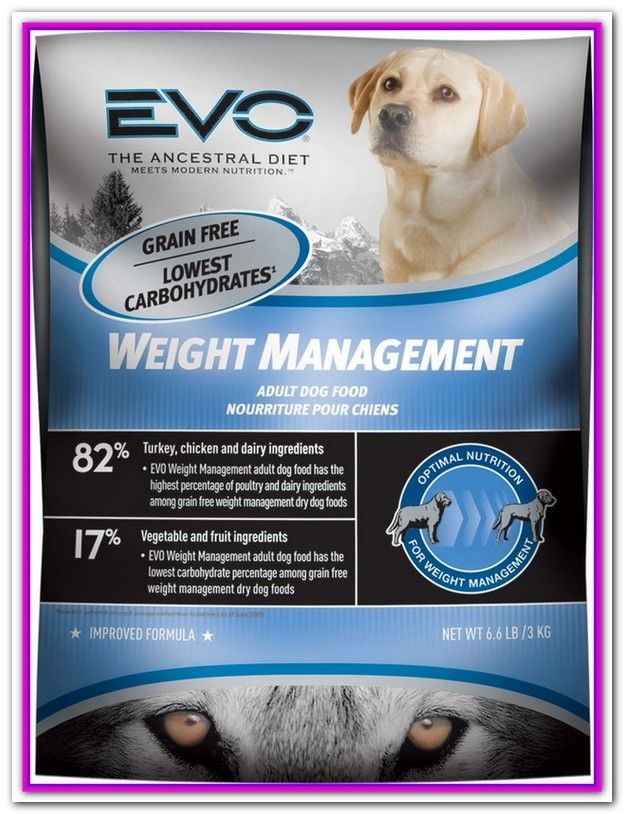 Best Weight Management Dog Food For Labs Dog Food Recipes Best