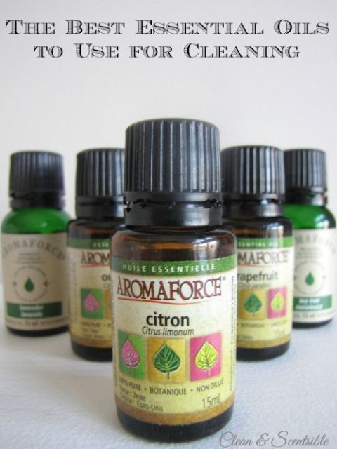 The best essential oils for cleaning.