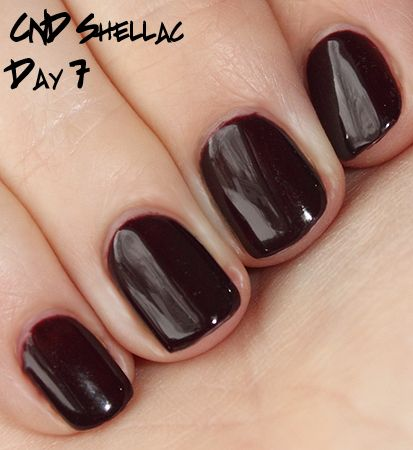 """Shellac Manicure in """"Fedora"""" nice color"""