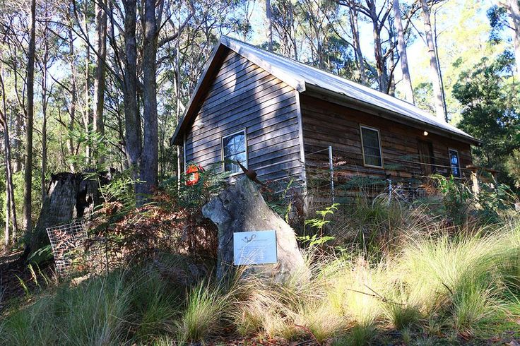 New bush accommodation for cyclists & bushwalkers near Derby #ridebluederby #discovertasmania http://www.dragontrails.bike