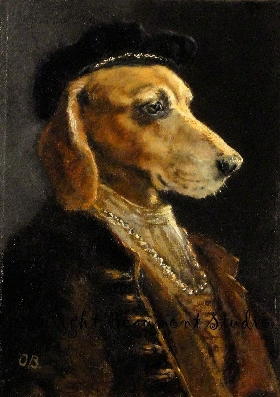 william of orange dog