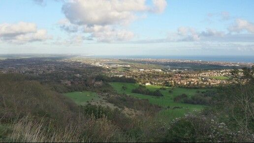 1/11/2014 Eastbourne from th Downs