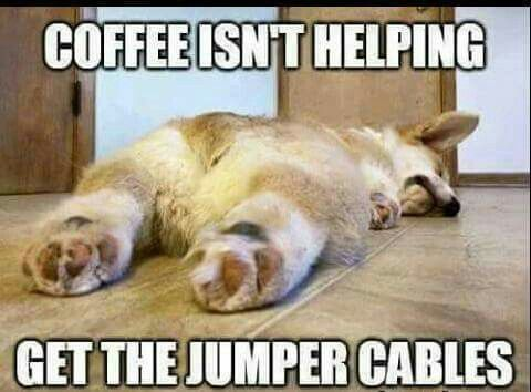 Coffee isn't helping. Get the jumper cables.