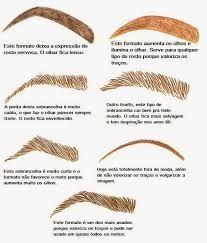 Resultado de imagem para tipos de pinça para sobrancelhas